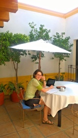 Our new terrace - an even nicer place to study