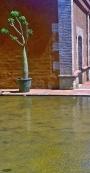 Reflecting pool detail